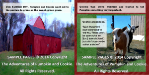 The Adventures of Pumpkin and Cookie Book Inside SAMPLE