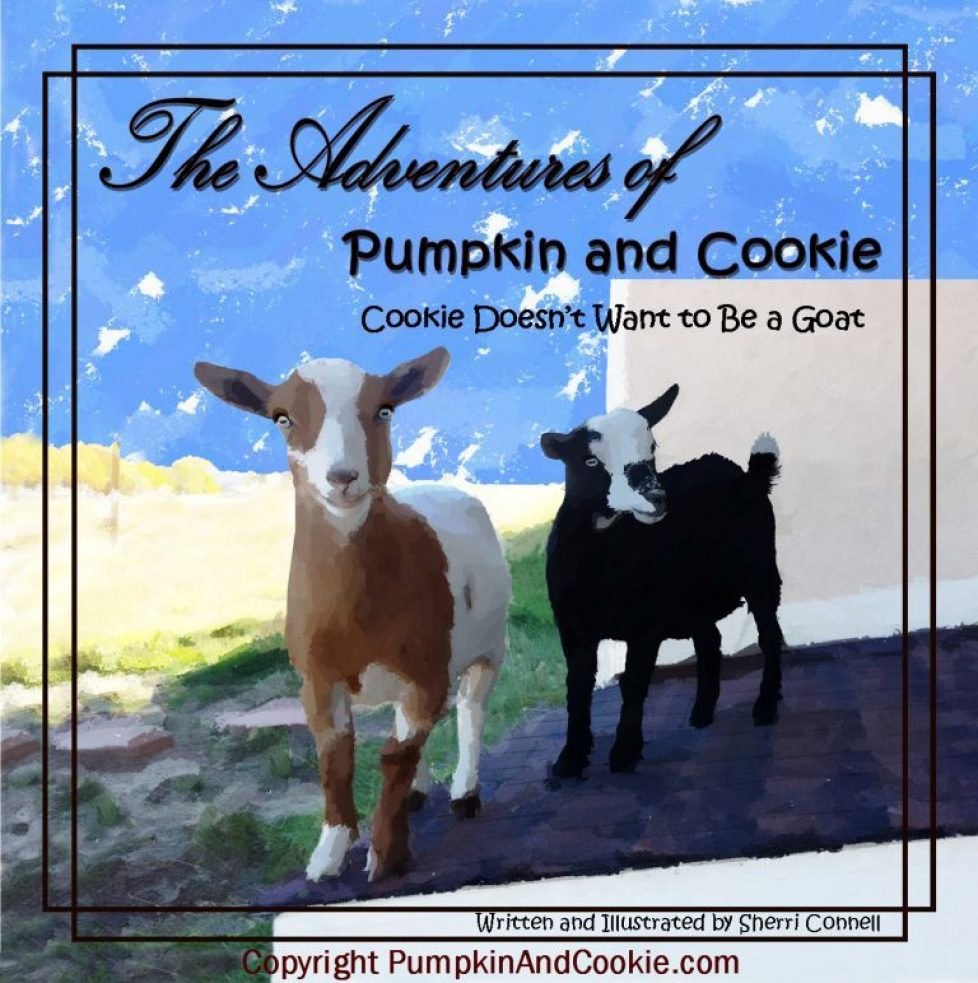 The Adventures of Pumpkin and Cookie PumpkinAndCookie.com